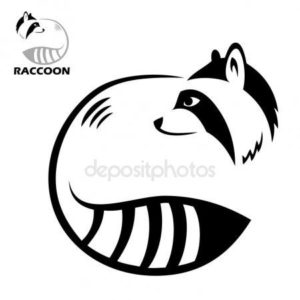 RACCOON-300x300